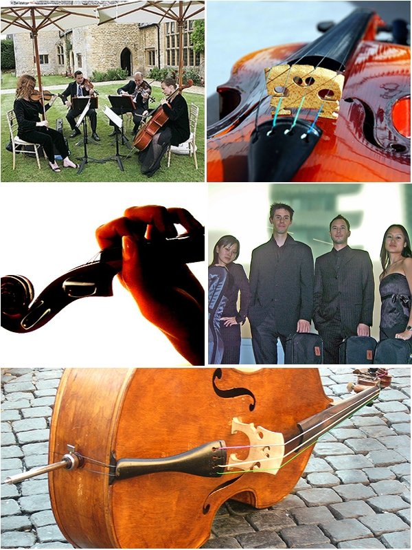 Create a classical ambience at your wedding with a string quartet